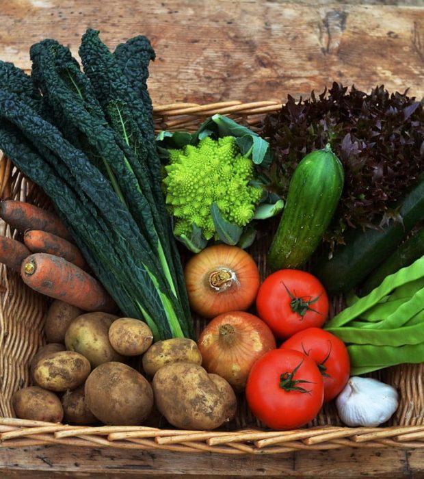 Large Vegetables